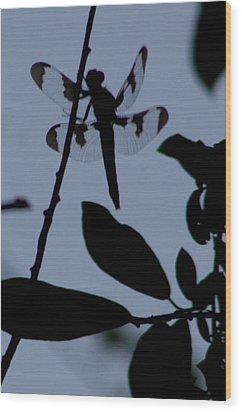 Dragonfly Blue Wood Print