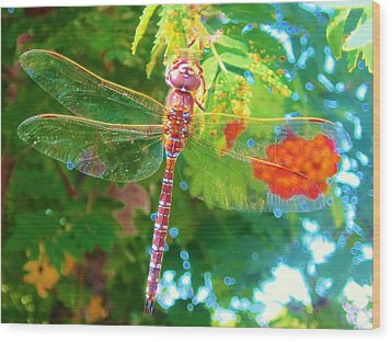 Dragonfly Wood Print by Cathy Long