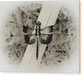 Dragonfly In Sepia Wood Print by Tony Grider