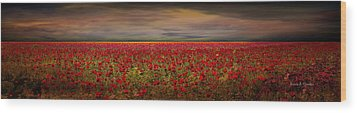 Drama Over The Flower Fields Wood Print by Angela A Stanton