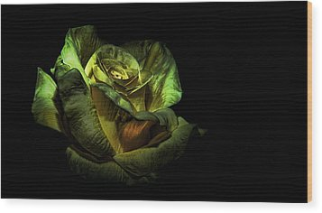 Dramatic Beauty Wood Print by Cecil Fuselier