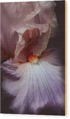 Dramatic Iris Flower Portrait Wood Print by Jennie Marie Schell