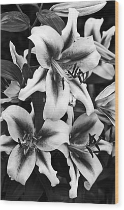 Wood Print featuring the photograph Dramatic Lilies by Dawn Currie