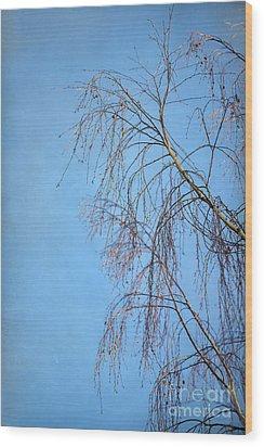 Dream Blue Wood Print by Evelina Kremsdorf