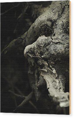 Dream Chanter Wood Print by Rebecca Sherman