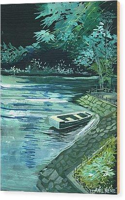 Dream Lake Wood Print by Anil Nene