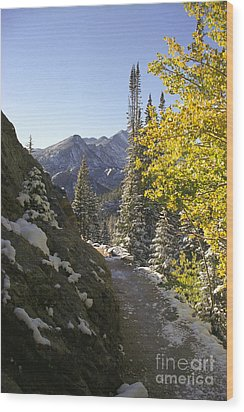 Wood Print featuring the photograph Dream Lake Sunrise by Arthaven Studios