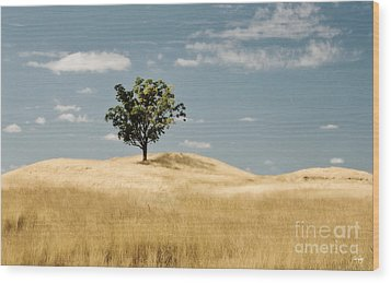Dream Tree Wood Print by Scott Pellegrin
