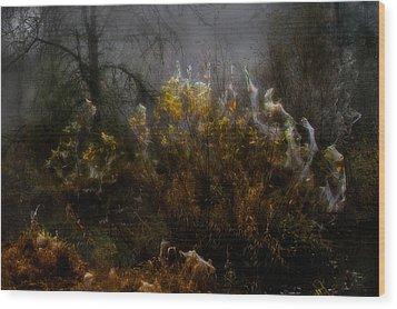 Dream Weavers Wood Print