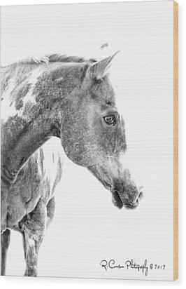 Dreamer Wood Print