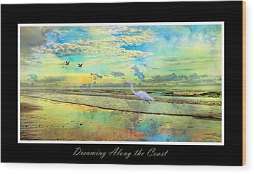 Dreaming Along The Coast -- Egret  Wood Print by Betsy Knapp
