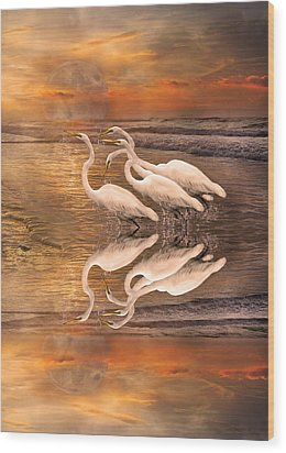 Dreaming Of Egrets By The Sea Reflection Wood Print by Betsy Knapp
