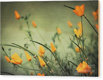 Wood Print featuring the photograph Dreaming Of Spring by Ellen Cotton
