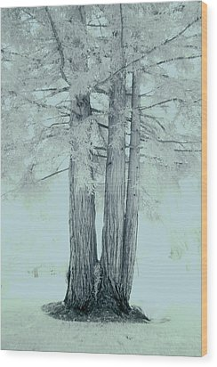 Imagination #08 Wood Print by Viggo Mortensen