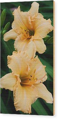 Dreams Of Peach Wood Print by Bruce Bley