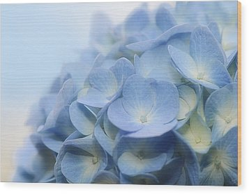 Wood Print featuring the photograph Dreamy Hydrangea by Lisa Knechtel