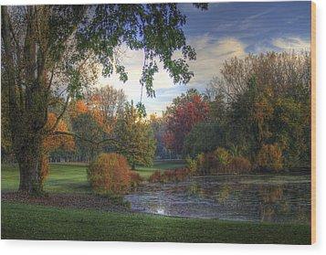 Dreamy View Wood Print