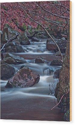 Dreamy Water  Wood Print by Brendan Quinn