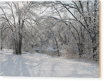 Wood Print featuring the photograph Dressed In Snow by Nina Silver