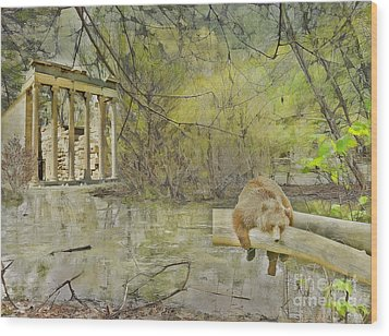 Wood Print featuring the photograph Drifter by Liane Wright