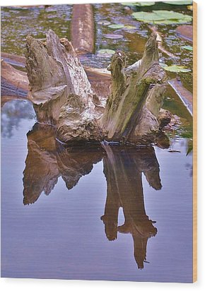 Drifting Reflections Wood Print by Mary Zeman