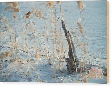 Driftwood Abstract Wood Print by Betty LaRue