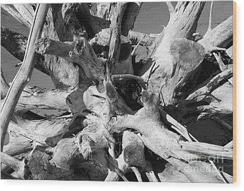 Driftwood Wood Print by Barbara Bardzik
