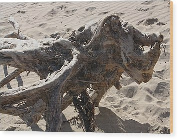 Wood Print featuring the photograph Driftwood Creature I by Amanda Holmes Tzafrir