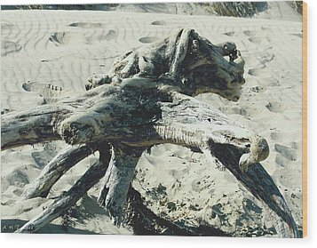 Wood Print featuring the photograph Driftwood Creature II by Amanda Holmes Tzafrir