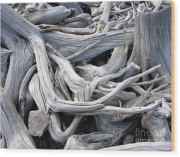Driftwood Wood Print by Gerry Bates