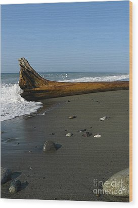 Wood Print featuring the photograph Driftwood by Jane Ford