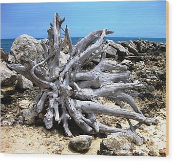 Wood Print featuring the photograph Driftwood by Judy Palkimas