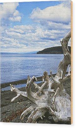 Driftwood On Beach Wood Print by Thomas R Fletcher