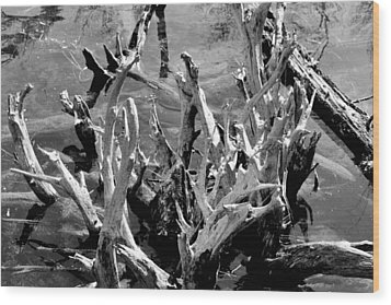 Driftwood On Lost Lake Wood Print by Michelle Calkins