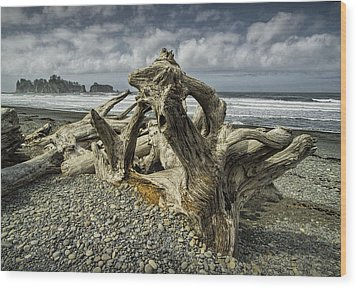 Driftwood On Rialto Beach In Olympic National Park No. 144 Wood Print by Randall Nyhof