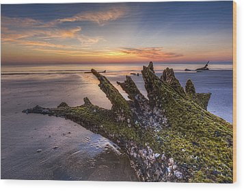 Driftwood On The Beach Wood Print by Debra and Dave Vanderlaan