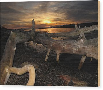 Driftwood Sunset Wood Print