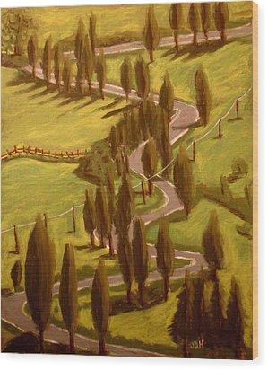 Drive Through Italy Wood Print