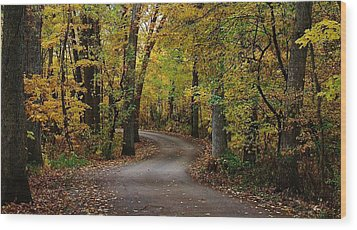 Drive Through The Woods Wood Print by Bruce Bley