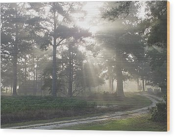 Driveway To Paradise  Wood Print by Mike McGlothlen