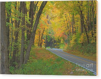 Driving Into Fall Wood Print by Geraldine DeBoer