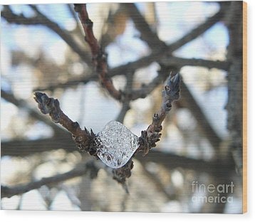 Wood Print featuring the photograph Drop Of Ice by Jane Ford