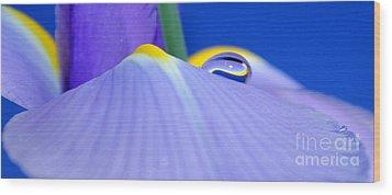 Drop Of Spring Wood Print