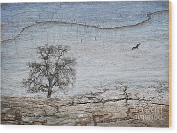 Drought Wood Print by Alice Cahill