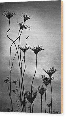 Wood Print featuring the photograph Dry Plants by Arkady Kunysz