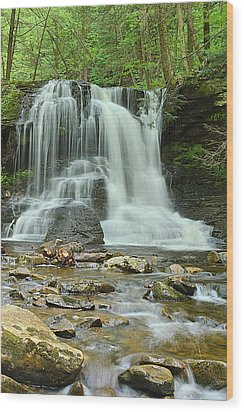 Dry Run Falls #1 Wood Print