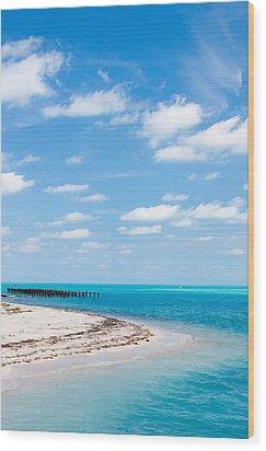Dry Tortugas Coaling Dock Wood Print by Adam Pender