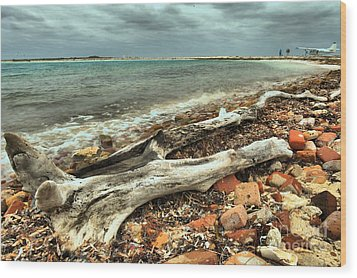 Dry Tortugas Driftwood Wood Print by Adam Jewell
