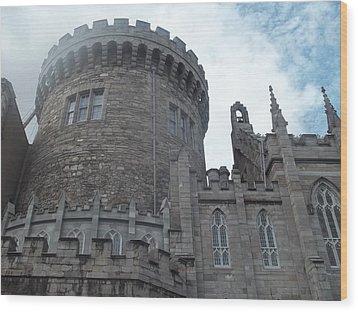Dublin Castle Wood Print