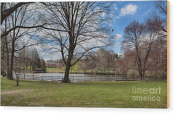 Duck Pond Haverford College Wood Print by Kay Pickens
